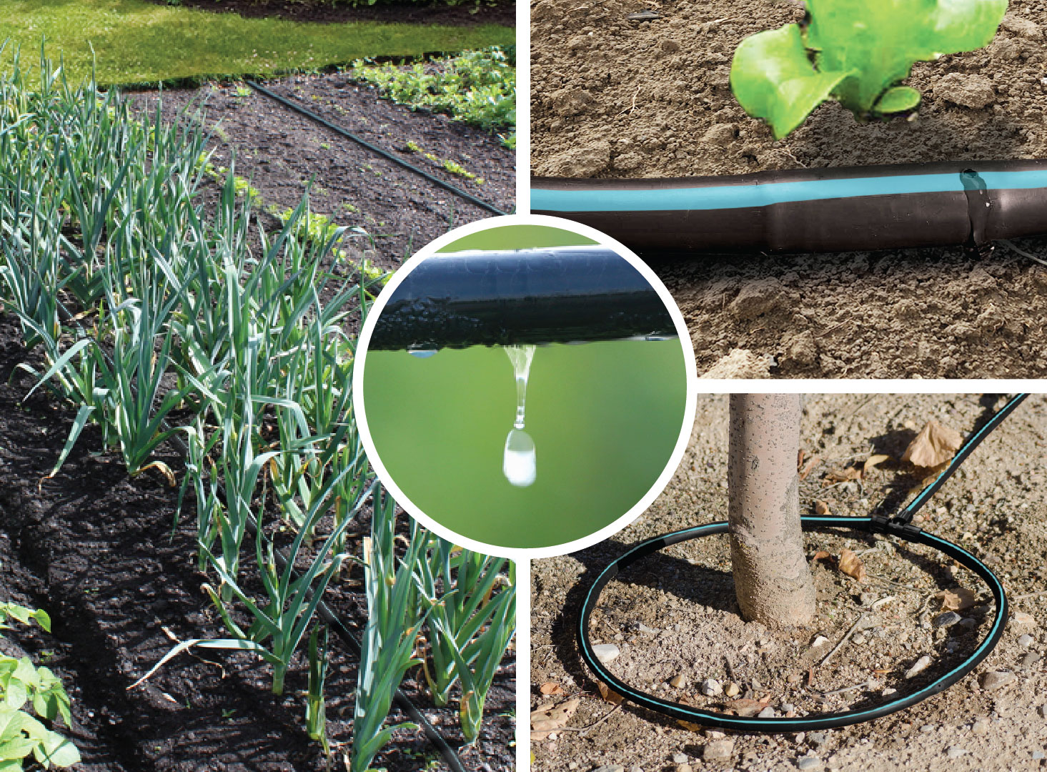 250__robust_drip_irrigation_kit