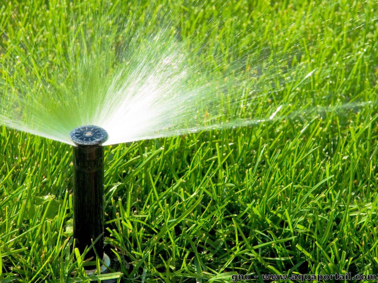 irrigation-arrosage-aspersion1